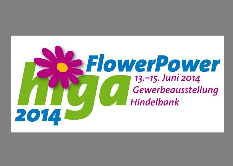 Logoentwicklung higa 2014